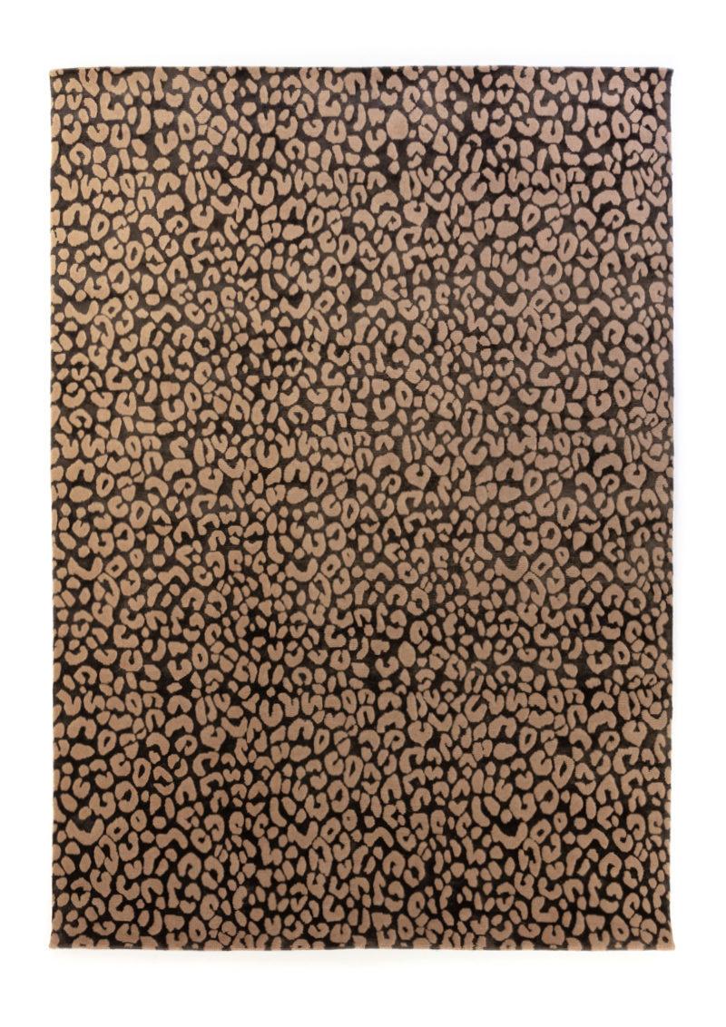 Leopard in Jopling